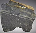 Kimberlite-wall rock sample (Gates-Adah Kimberlite Dike, Early Jurassic; Fayette County, Pennsylvania, USA) (31547573652).jpg