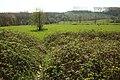 Kloosterbos gezien vanuit natuurreservaat Vossenhol (Middenloop Zwalm), Zottegem.jpg