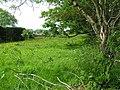 Knockalt Townland - geograph.org.uk - 1341027.jpg