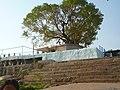 Koppara laxmi narasimha swamy temple.jpg