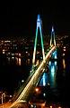 Korea-Yeosu-Dolsan Bridge at night-01.jpg