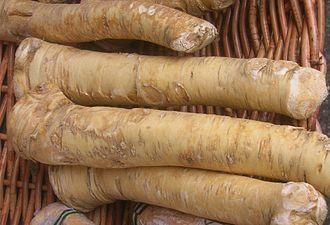 Horseradish - Sections of roots of the horseradish plant