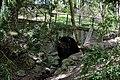 Krottenbach Wertheimsteinpark Brücke.JPG