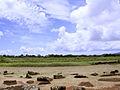 Kukaniloko-birth-stones.jpg