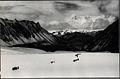 Kula Kangri from Moenla Karchung 1933·.jpg