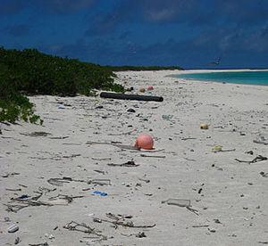 English: Marine debris on the beach of Green I...