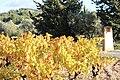 L'automne au Castellet - 08.jpg