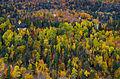 L'automne au Québec (8072544123).jpg