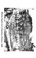 La Fedelidad (microform) - (novela Filipina) (IA aqb2147.0001.001.umich.edu).pdf