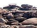 La côte de granit rose à Trégastel - 010.JPG