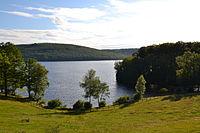 Lac de Vassivière, depuis l'île.jpg