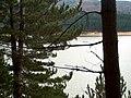 Lago Cecita Sila - panoramio.jpg