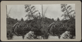Lake view with dam, from Robert N. Dennis collection of stereoscopic views.png