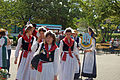 Landestrachtenfest S.H. 2009 09.jpg