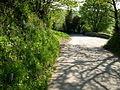 Lane at Tutwell - geograph.org.uk - 795526.jpg