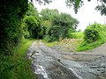 Lane to Stowfield from Eastbach - geograph.org.uk - 1427662.jpg