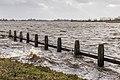 Langweerderwielen-Langwarder Wielen. Storm Ciara. 11-02-2020. (d.j.b) 06.jpg
