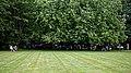 Lawn at Easton Lodge Gardens, Little Easton, Essex, England 03.jpg