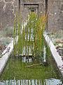 Le Jardin des Orpins et des Graminées (Estuaire, St-Nazaire) (7716935300).jpg