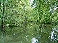 Leverkusen - Schloss Morsbroich 31 ies.jpg