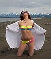 Liesl Wallin - Alaskan solar panel.jpg
