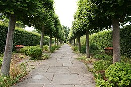 a path of grey flagstones running between an avenue of trees