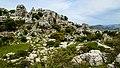 Limestone Rocks at El Torcal de Antequera 2.jpg