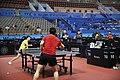 Lin Gaoyuan Fan Zhendong ATTC2017 2.jpg