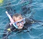 Linda Heart Reef (30859742722).jpg