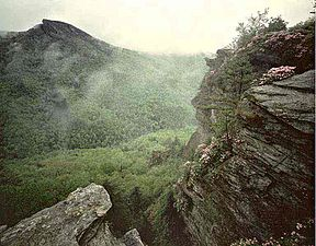 Linville Gorge Wilderness Wikipedia