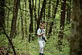 Little-forestwanderer-springtime-woods - West Virginia - ForestWander.jpg