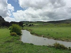 Llanos del Republicano - P1230164.jpg