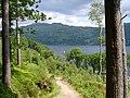 Loch Lomond - geograph.org.uk - 837623.jpg