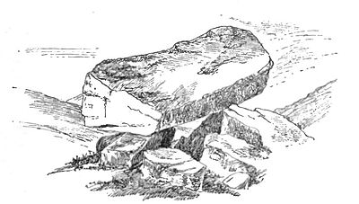 Logan Rock. The Rugglestone, Widdecombe.jpg