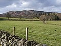 Looking NW to Drumcennant Hill - geograph.org.uk - 364300.jpg