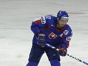 Ľubomír Višňovský - Image: Lubomir Visnovsky 2008IIHF