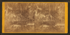 Magnolia Cemetery. Island Grove, by Quinby & Co..png