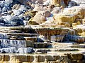 Mammoth Hot Springs Terraces 2, Yellowstone 2011 (26670162176).jpg