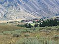Mammoth hot springs 1.jpg