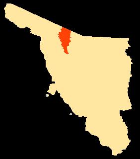 Altar Municipality Municipality in Sonora, Mexico