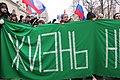 March in memory of Boris Nemtsov in Moscow (2019-02-24) 136.jpg