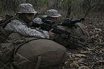 Marines conduct training for Talisman Sabre 2015 150712-M-UT901-012.jpg