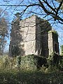 Mausoleum of Sir James Tillie of Pentillie Castle - geograph.org.uk - 1205441.jpg