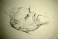 Max Klinger auf dem Totenbett.jpg