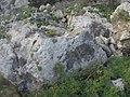 Mellieha, Malta - panoramio (135).jpg