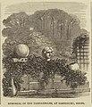 Memorial of the Dardanelles, at Cassiobury, Herts - ILN 1853.jpg