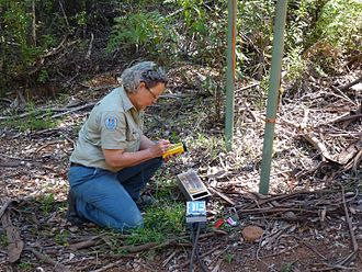 Department of Parks and Wildlife (Western Australia) - Western Australia Parks and Wildlife National Park Ranger assessing public frequentation on a Metro Count Vehicle Classifier System, Warren National Park, Donnelly District, December 2014.