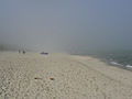 Mgły nad Bałtykiem.jpg