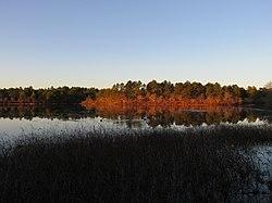 Mill Pond, Wareham MA.jpg