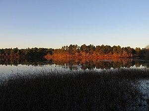 Mill Pond (Wareham, Massachusetts) - Mill Pond